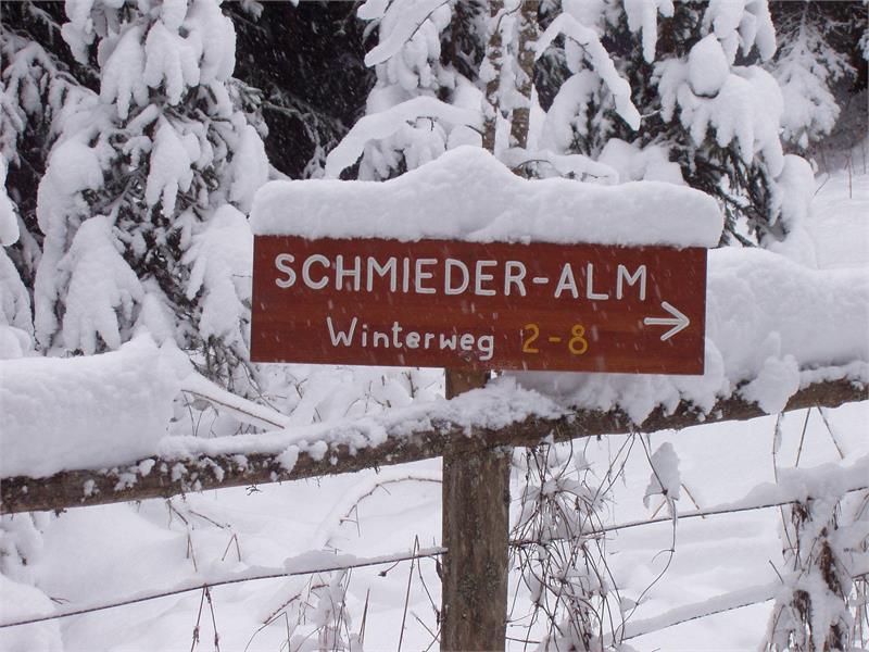 Auf dem Weg zur Schmiederalm über den Winterweg