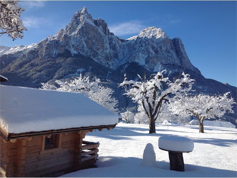 Winter am Singerhof