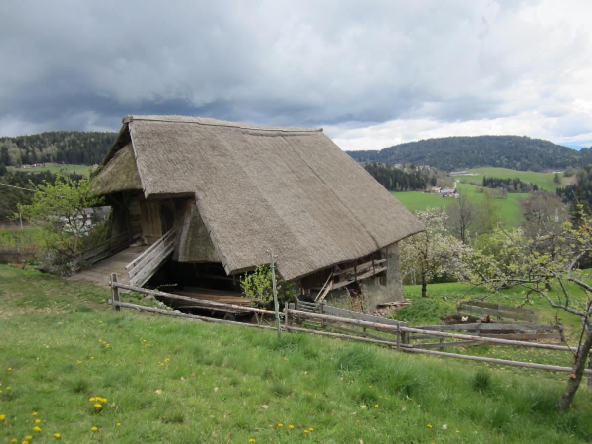 Strohdach - Hingucker Beimstein Knott, Vöran
