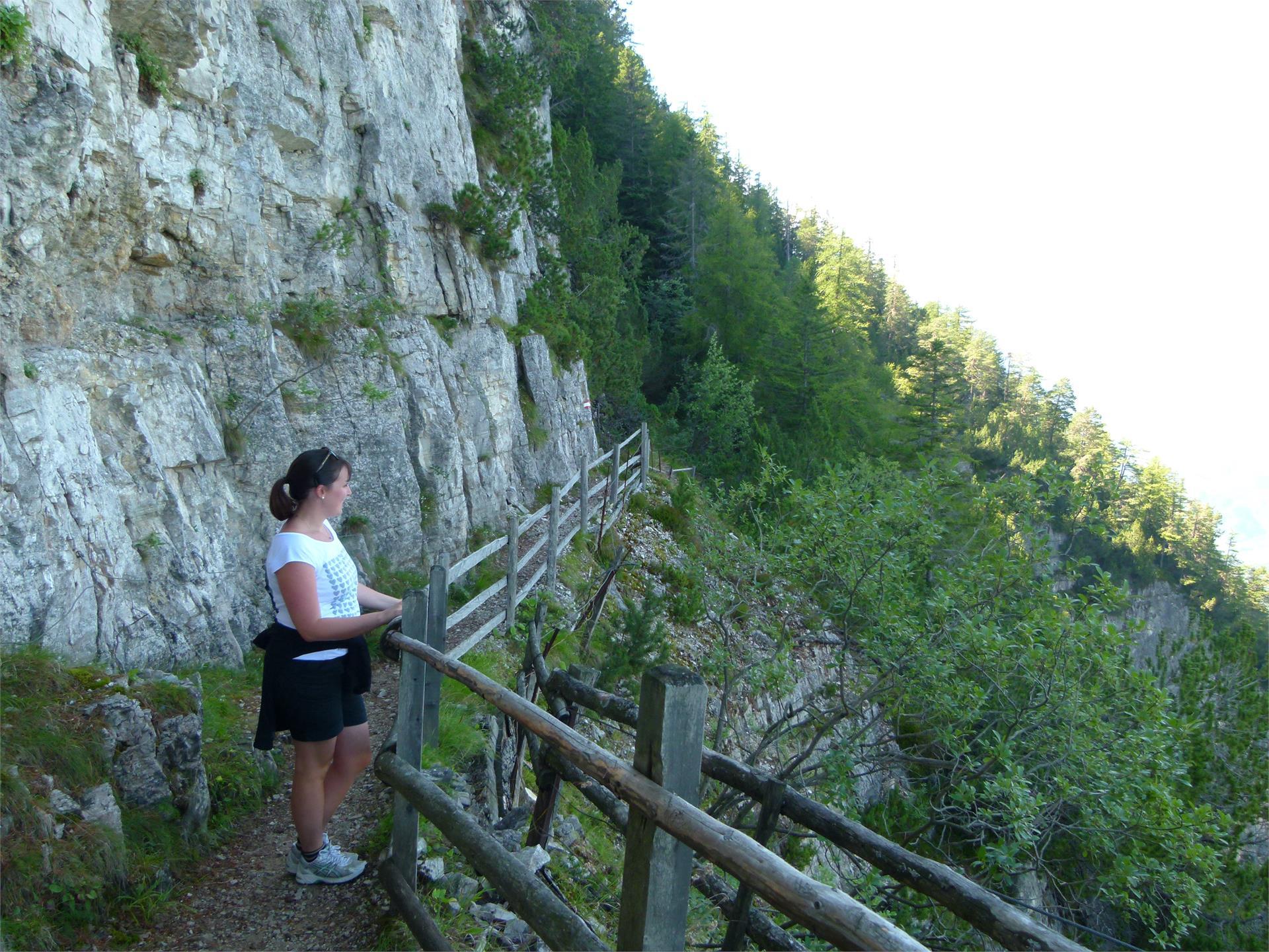 Panorama Panalpino Trodena-Hochwand-Malga Cislon-Trodena