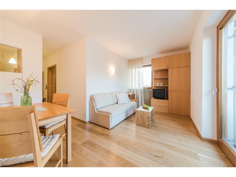 Panoramawohnraum - Wohnung 2