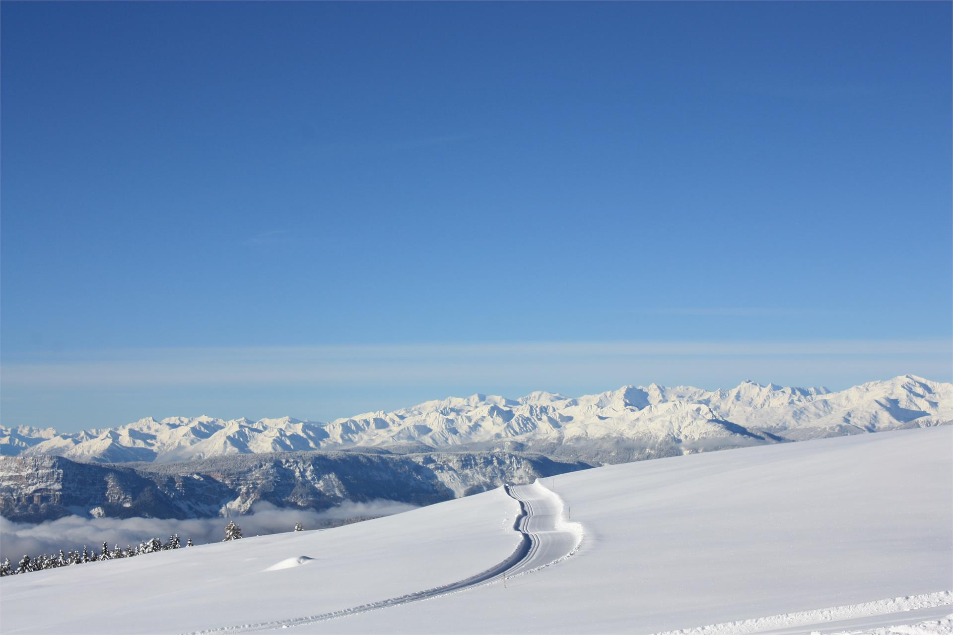 Premium Panorama Tour on the Rittner Horn Mountain
