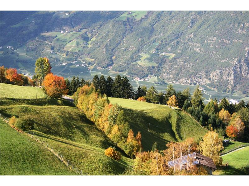 Aschbach im Herbst
