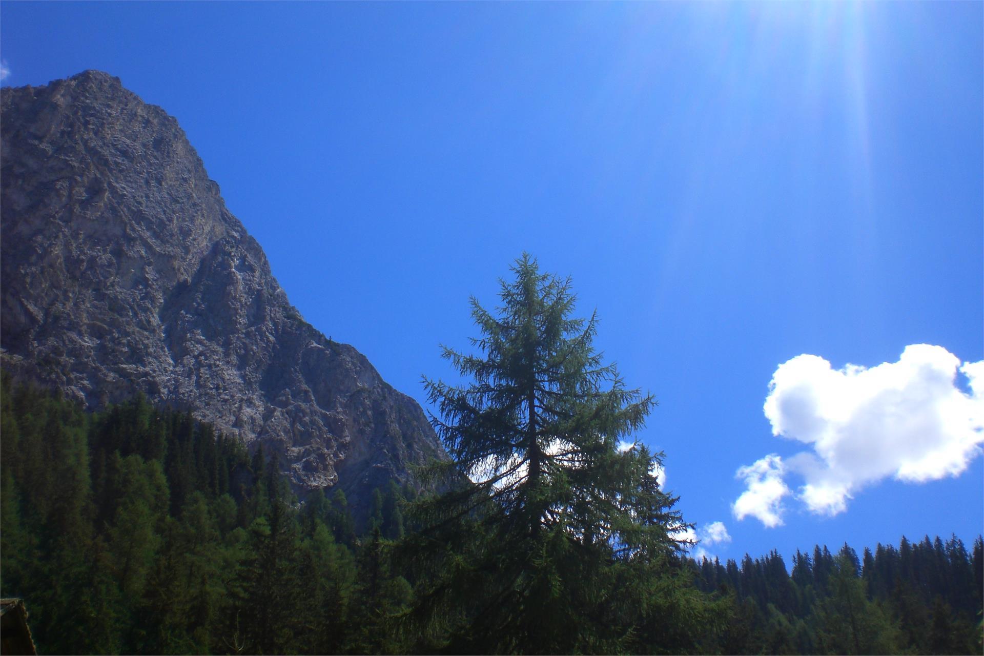 Sommerwanderung - Altprags - Lungkofel