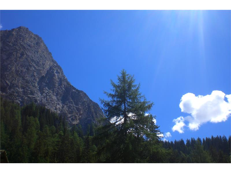 Monte Lungo
