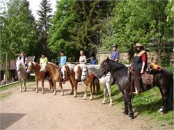 Horse farm Edelweiss