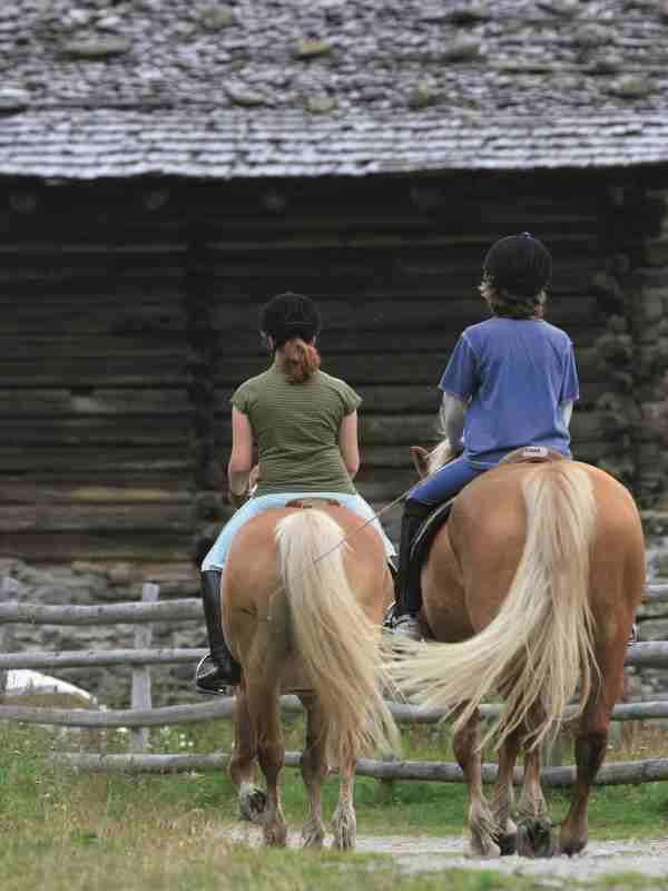 Riding in Plan/Pfelders: Riding stable Steinerhof