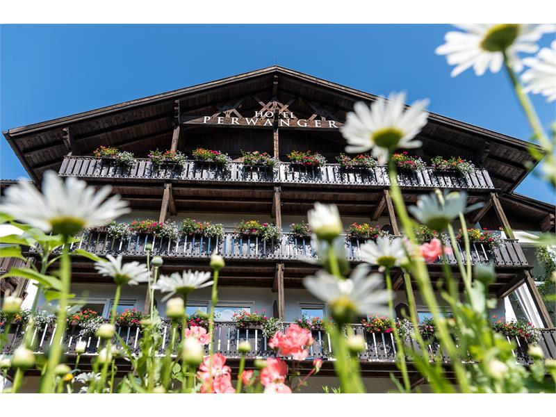Facade in summer - Hotel Appartements Perwanger, Fiè allo Sciliar/Völs am Schlern
