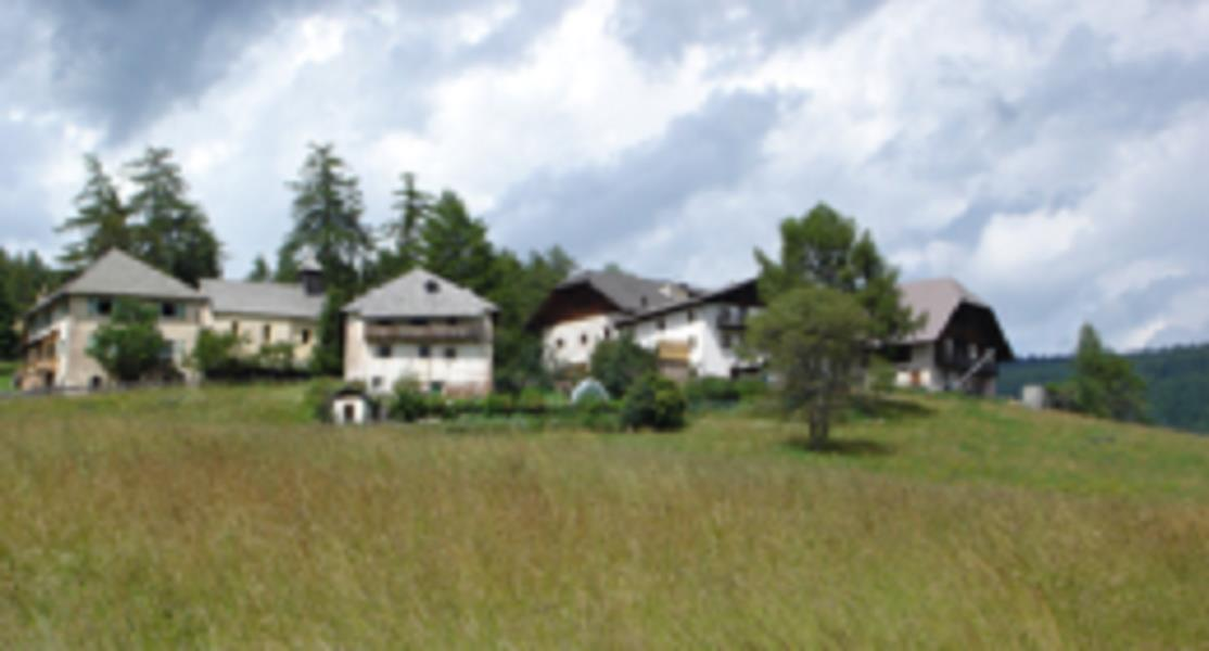 Farmhouse Campitello-Stegerhof