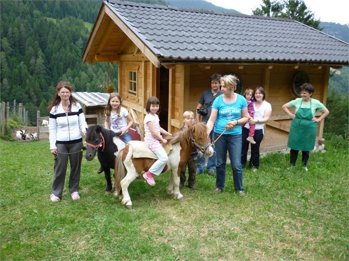 ein kleiner Ausritt auf unseren Ponys