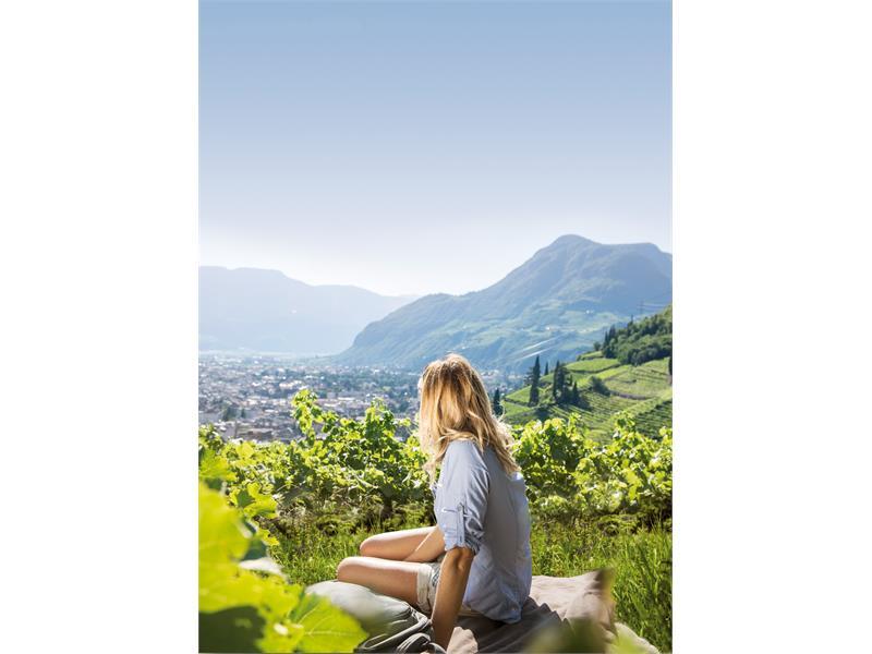 Vom Magdalena Hügel den Ausblick genießen