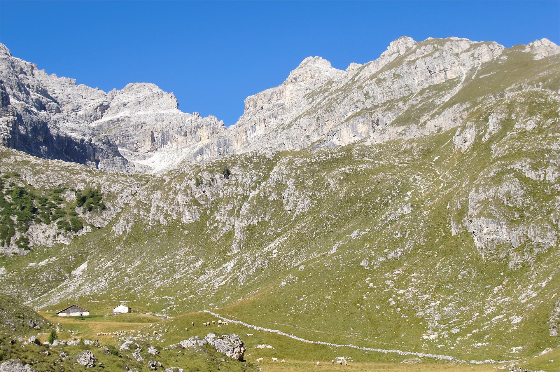 Summer hike: Lungiarü - Muntcörta - Antersasc - Puez Inn