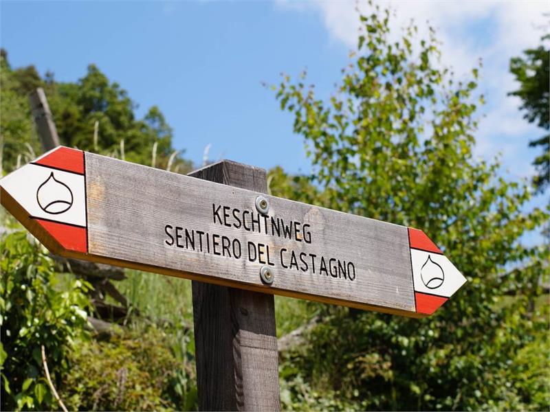 Sentiero del castagno Velturno - Chiusa