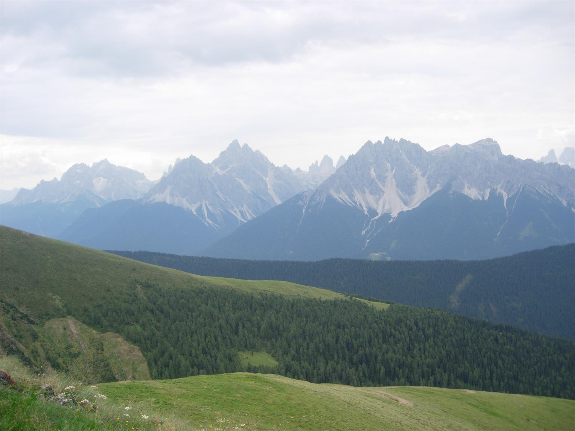 Sommerwanderung: Kandellen - Pfannhorn