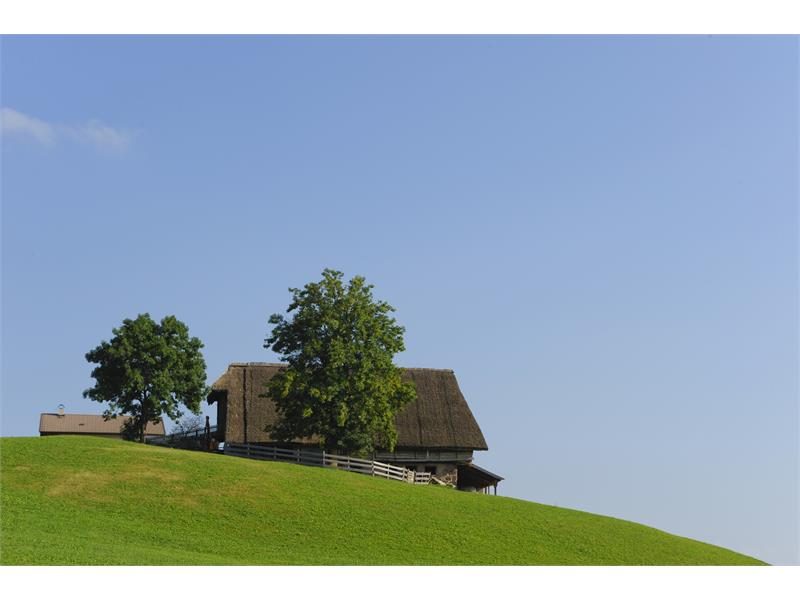 Thatched Roof on the Tschögglberg plateau