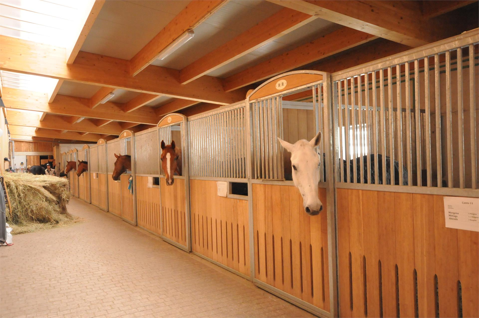 "Riding stable ""Steinwandterhof"""