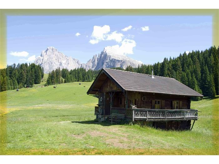 Mountain hut in summer