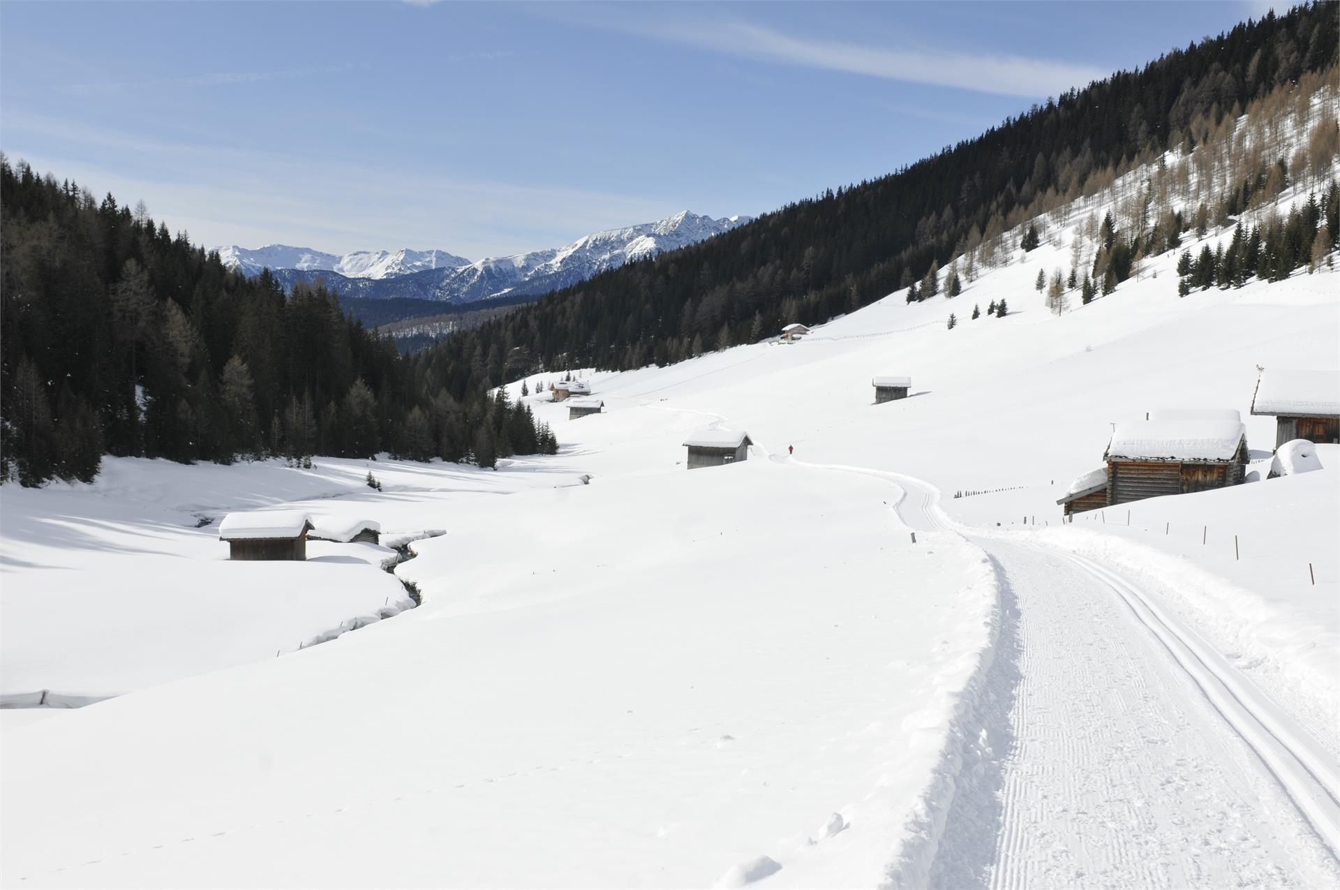 Escursione invernale in Valle Altafossa presso Maranza
