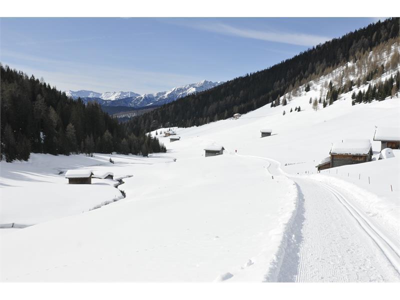Nella valletta. Escursione invernale attraverso la valle Altafossa presso Maranza