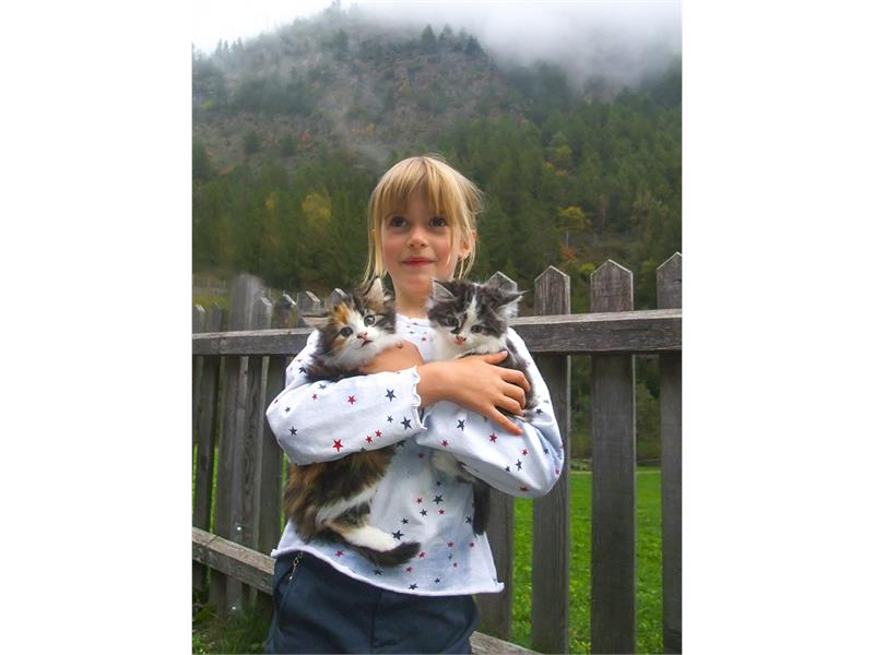 Lisa with littl cats