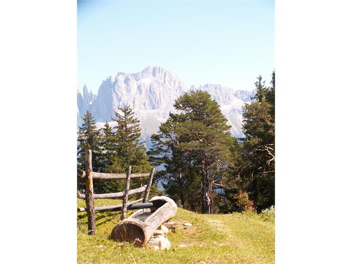 Dolomiti - Catinaccio