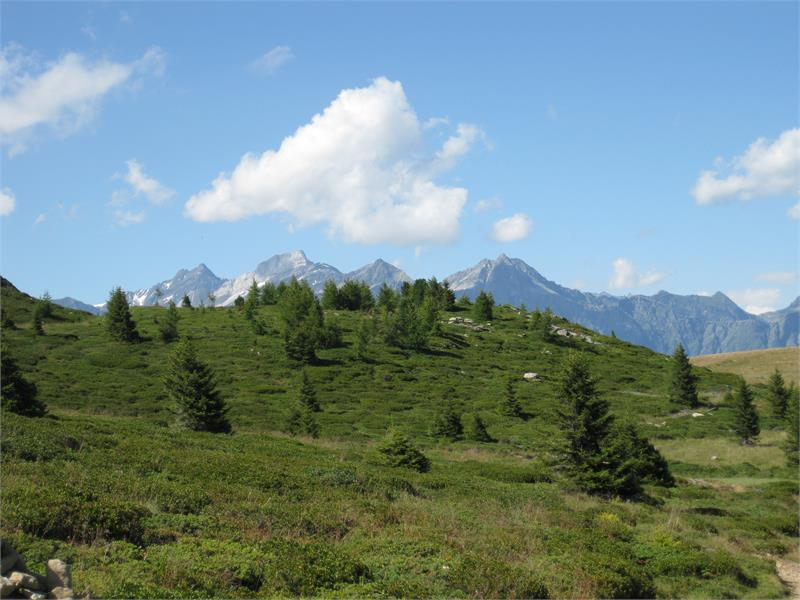 Gruppo Tessa da Monte San Vigilio