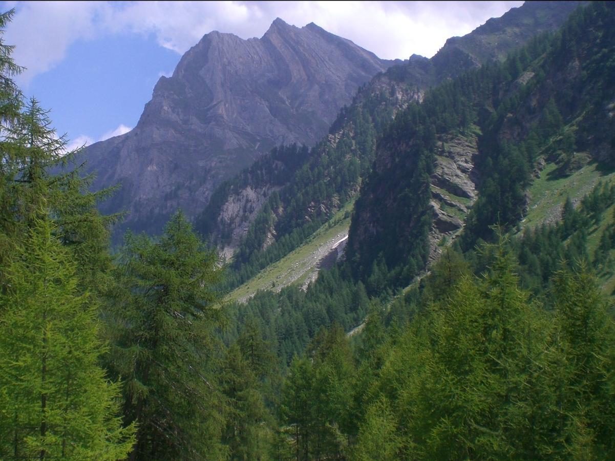 "Climbing ""Nesselwand"""