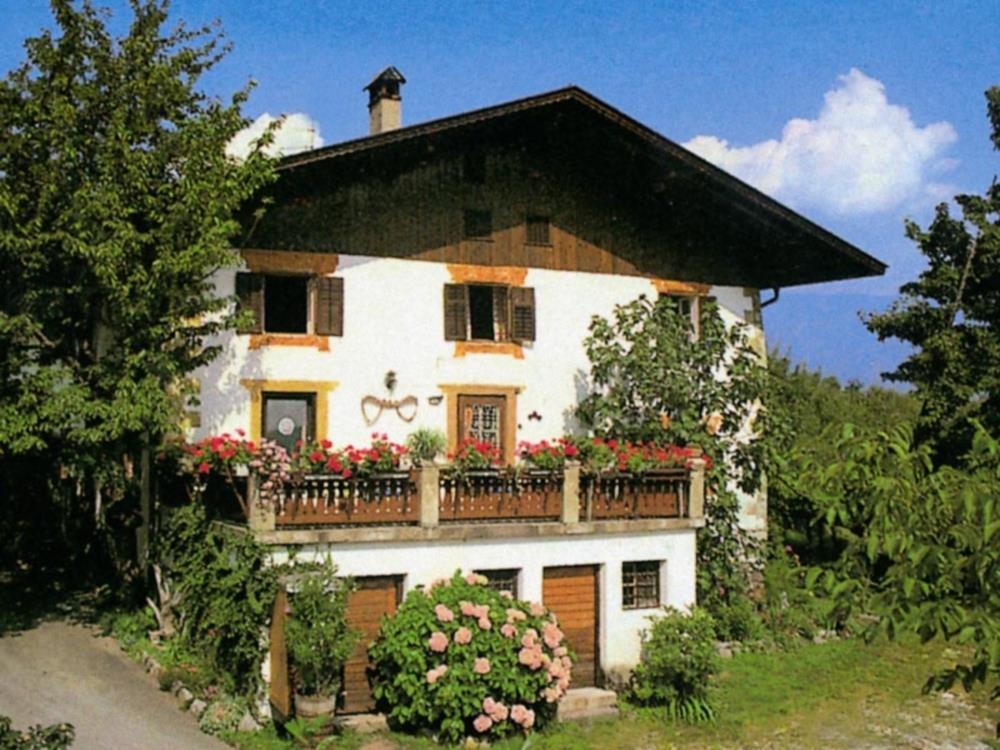 Bauernhof Wildhof