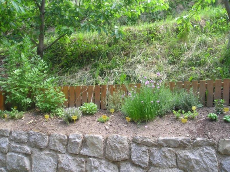 Herbage garden