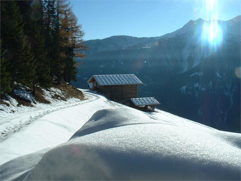 Gigglhirn im Winter