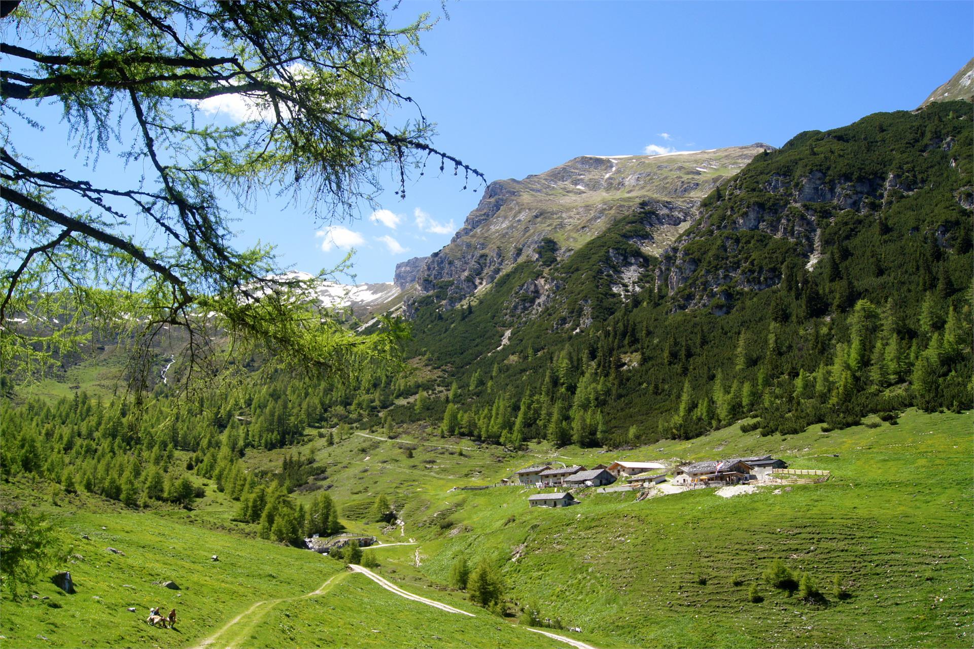 Dolomieu trail - Hike
