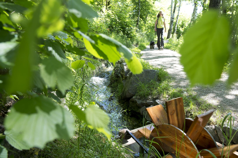 Vom Rablander Waalweg auf den Sonnenberger Panoramaweg nach Naturns