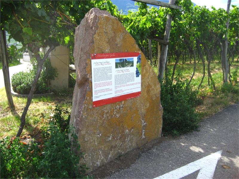 Informationstafeln entlang des Weinlehrpfads