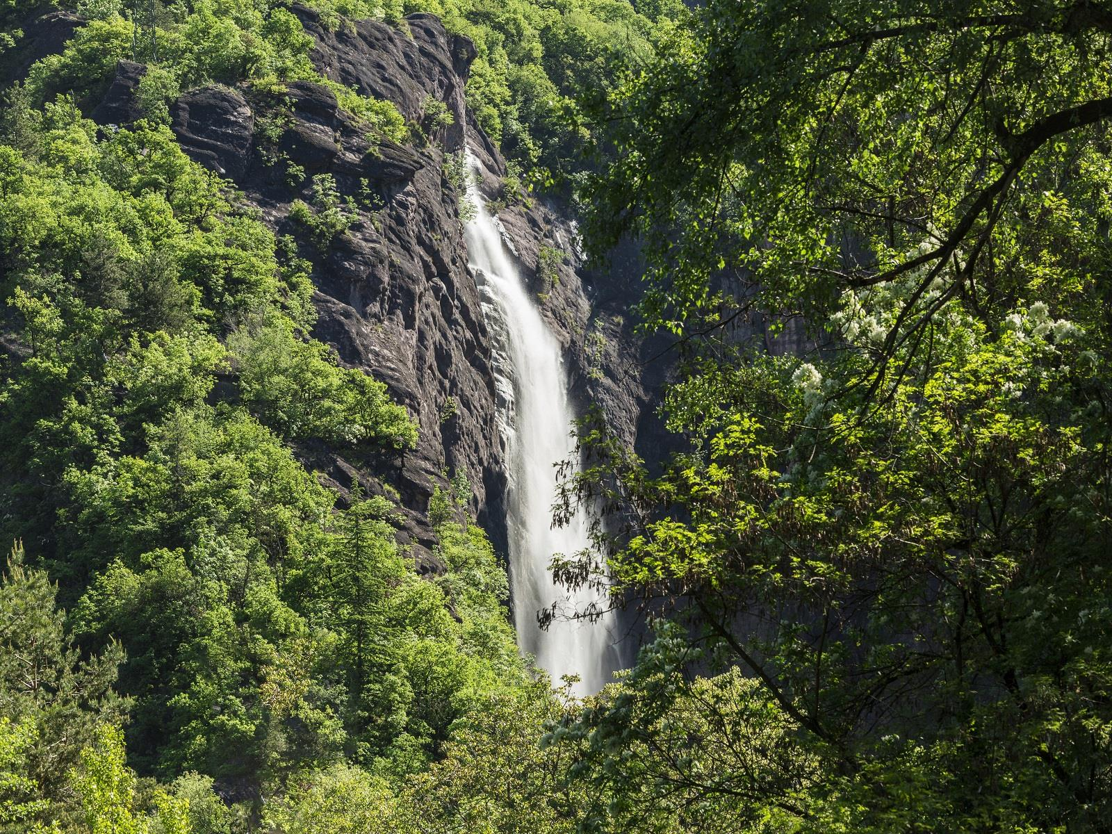 "Waterfall and ""Katzenleiter"""