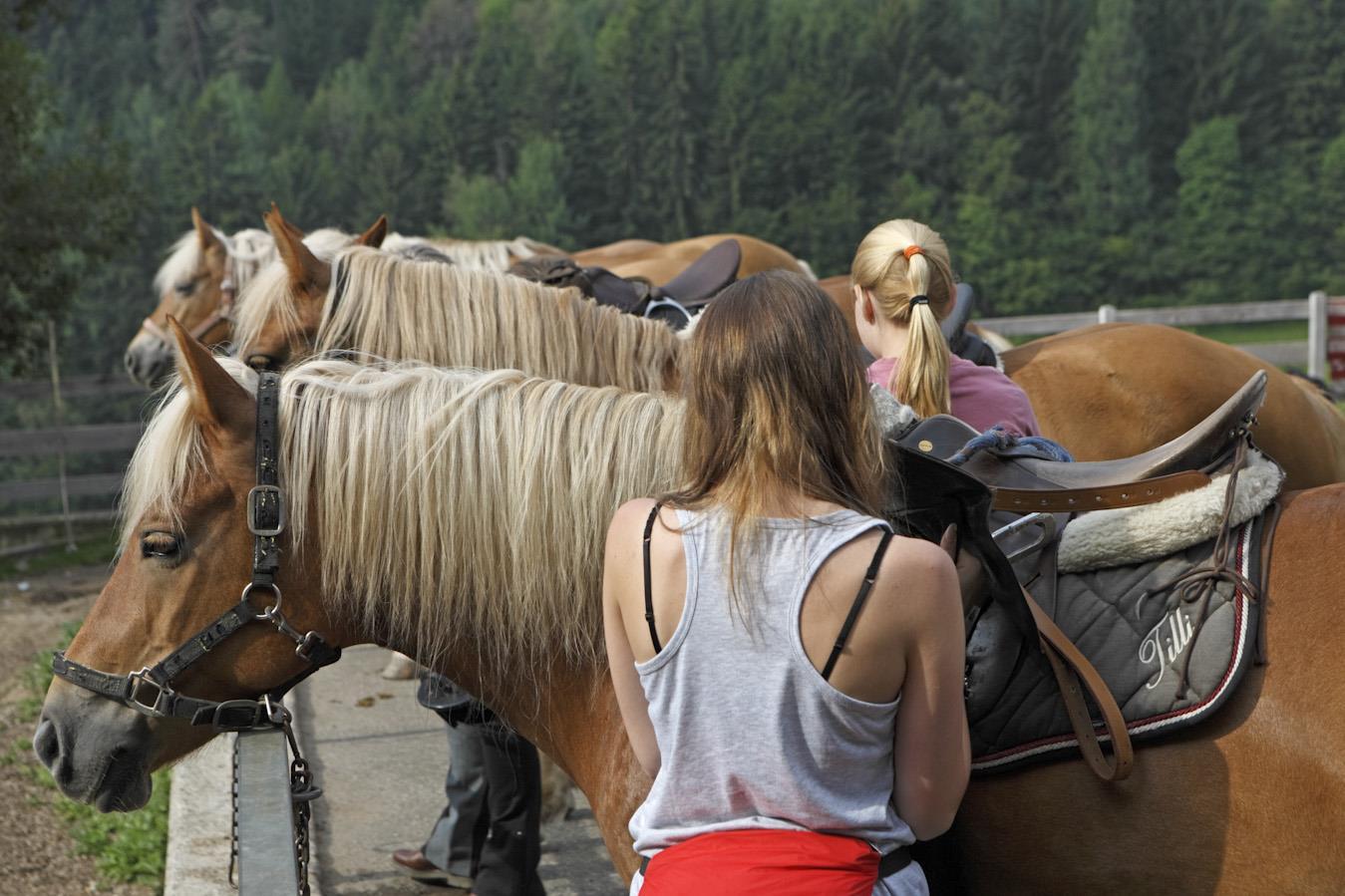 Riding stable Paur