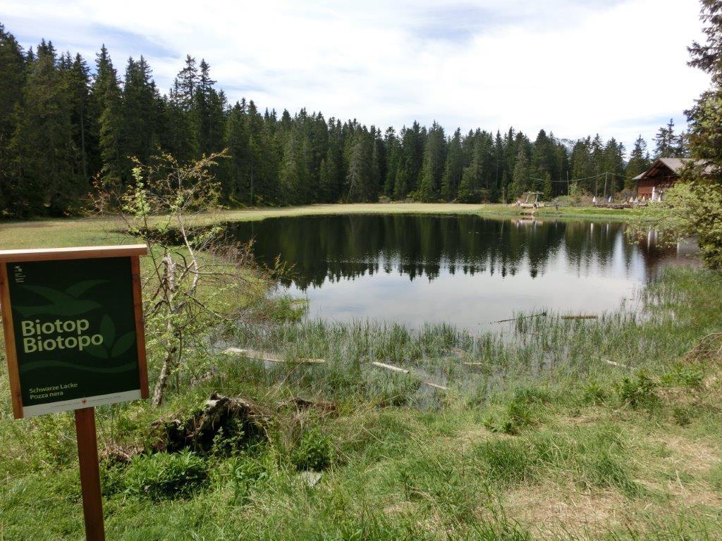 Biotopo Lago nero