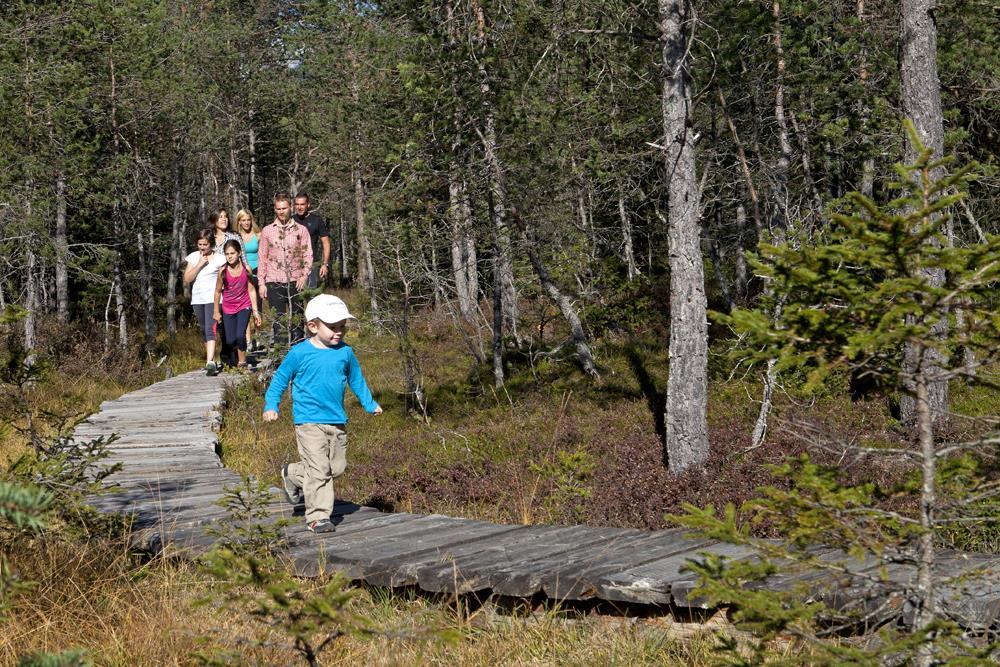Escursione: Biotopo Rasner Möser