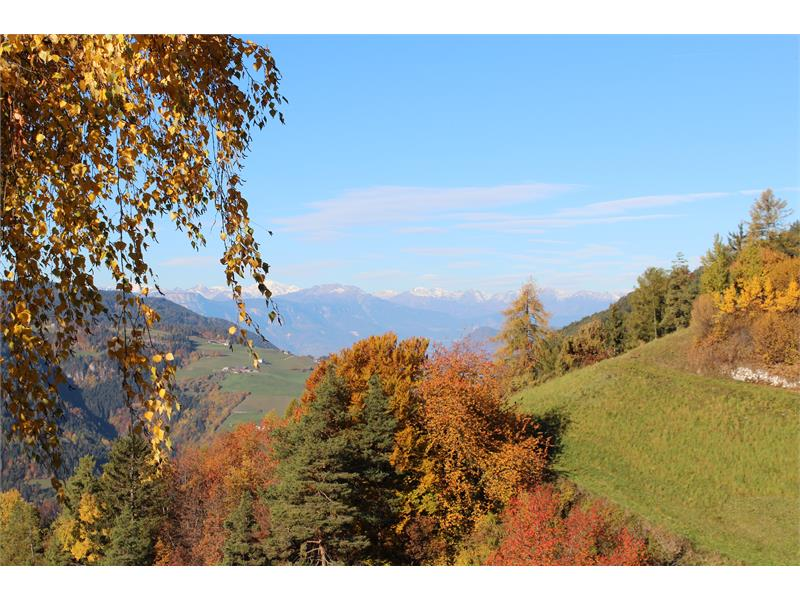 bella vista in autunno al Thalerhof