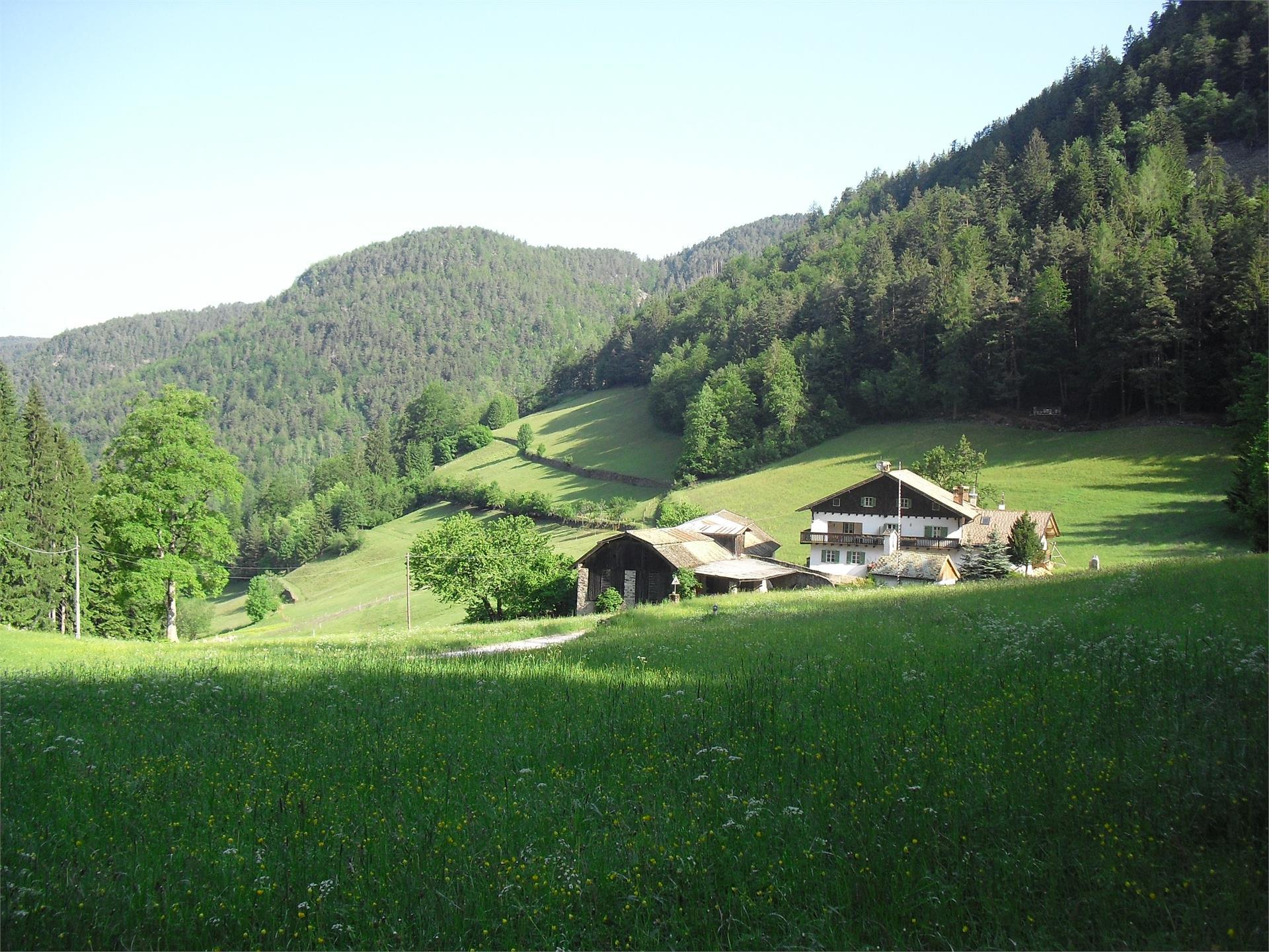Ferienwohnungen Fölserhof