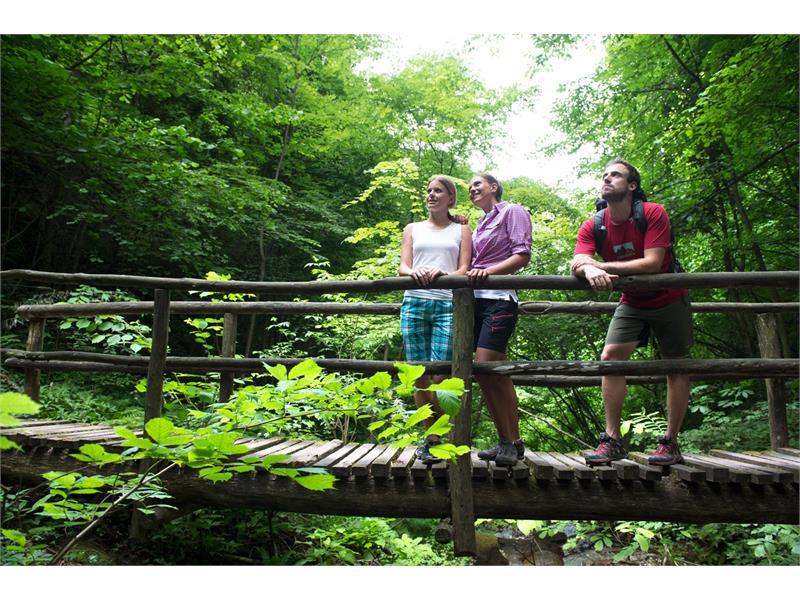 Escursione attraverso la gola Rastenbach