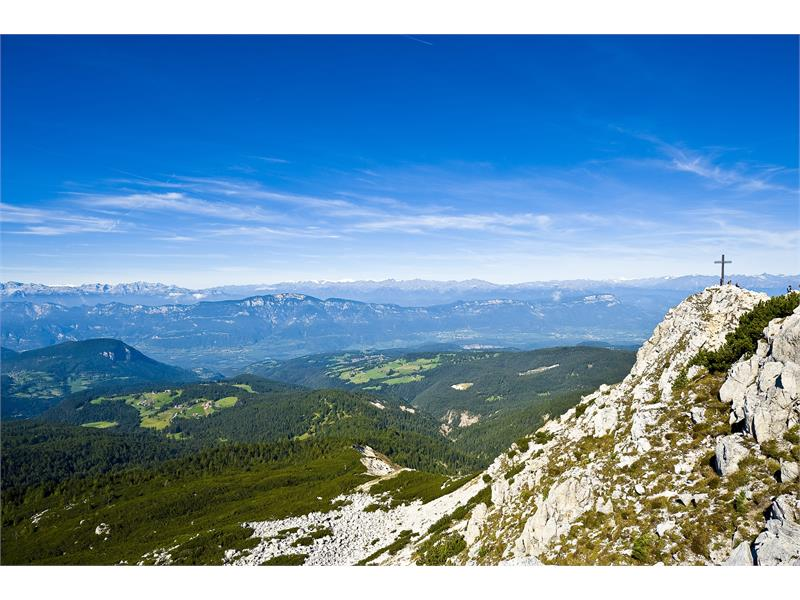 Panoramic view from Corno Bianco/Weißhorn