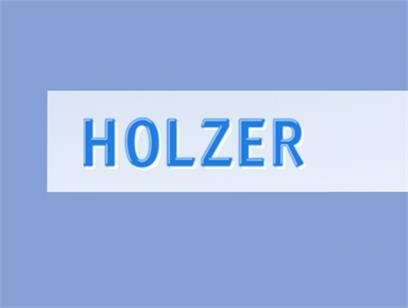 Holzer servizi automobilistici Sesto
