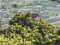 The ruins of Castle Greifenstein