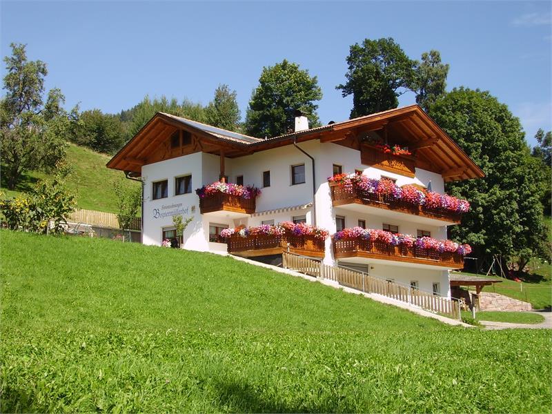 Vacanze in agriturismo - Maso Boznermüller a Verano/Alto Adige