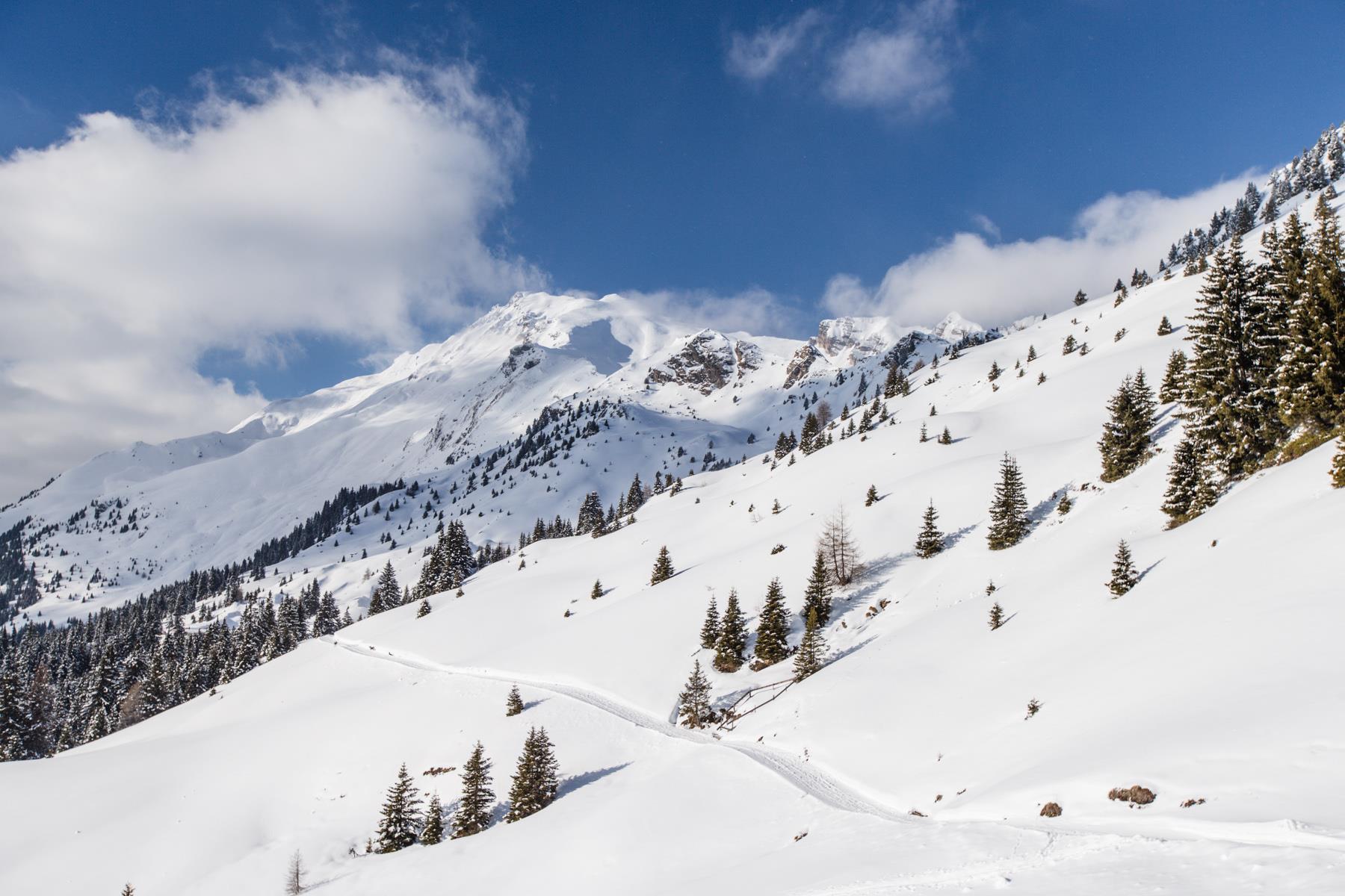 Escursione invernale alla malga Kuhalm