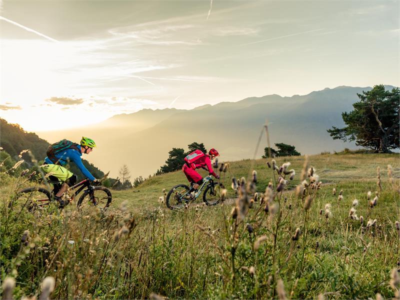 Montesole Trail