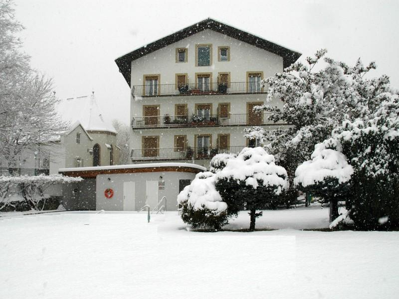 The garden during the winter