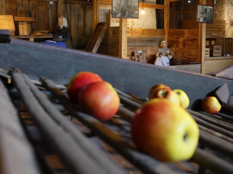 Südtiroler Obstbaumuseum Lana