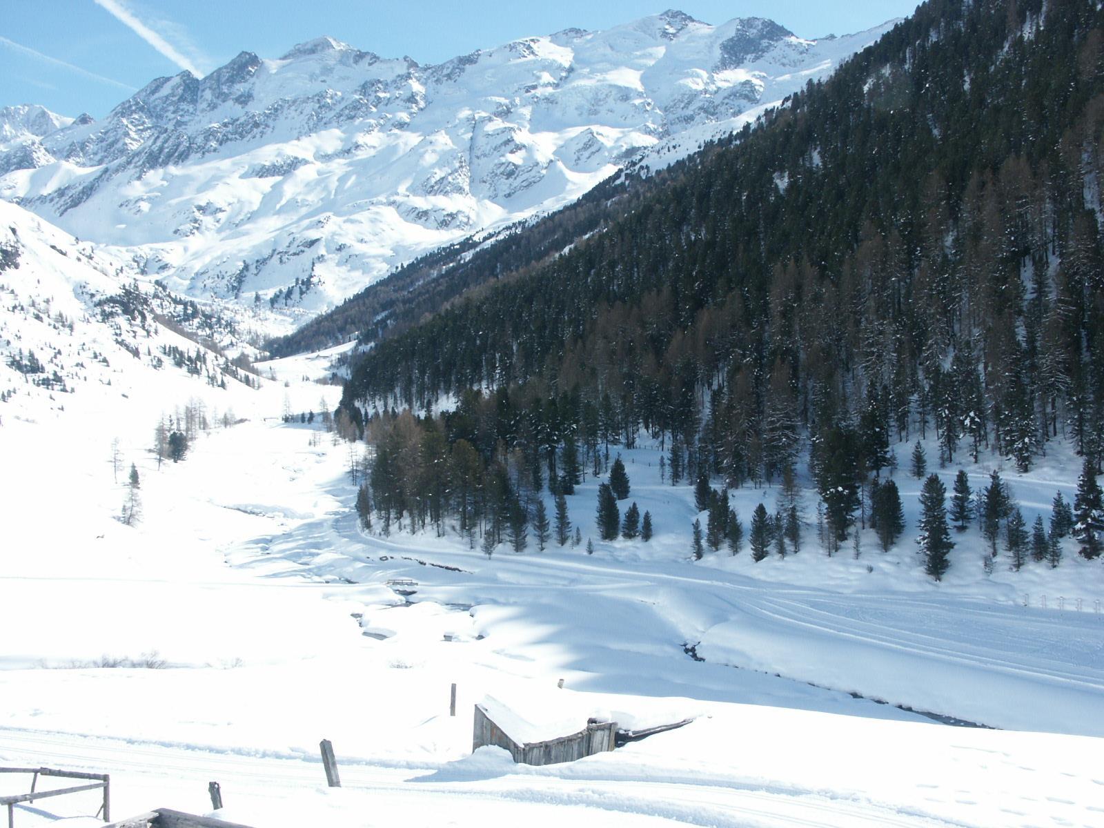 winter panoramic view