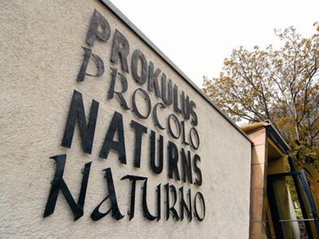 Prokulus Museum Naturno/Naturns